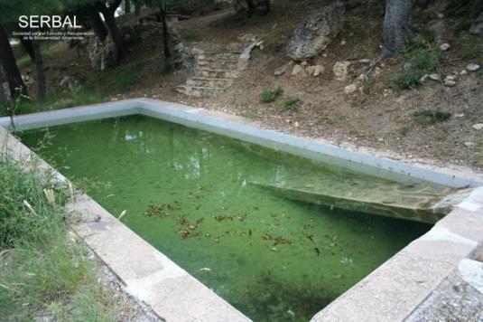 Construcción rampa de cemento (Fuente: serbal-almeria.com)